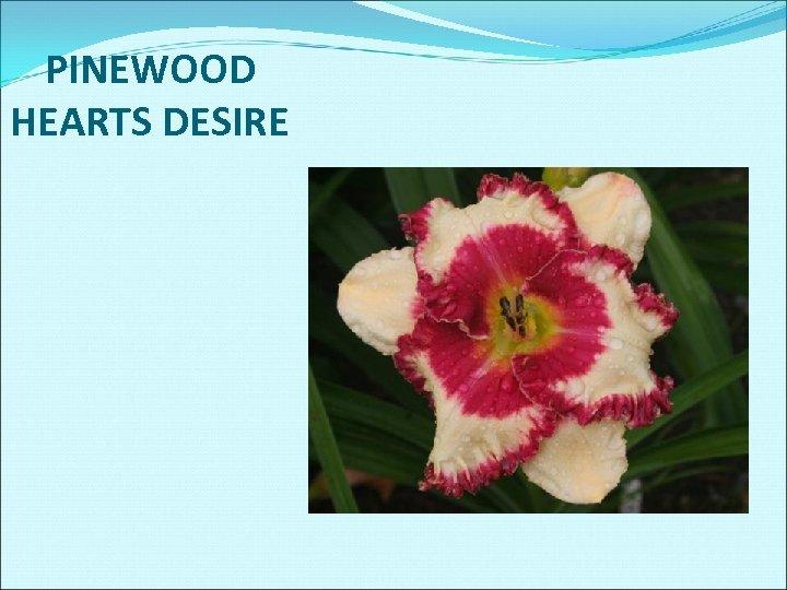 PINEWOOD HEARTS DESIRE