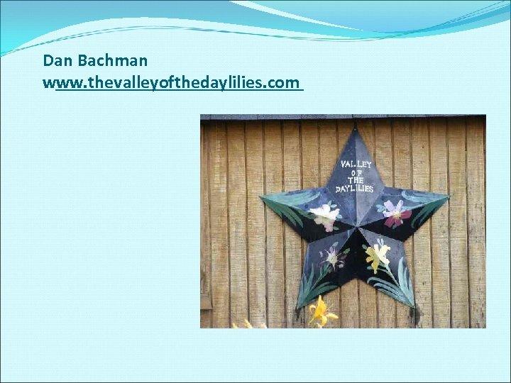 Dan Bachman www. thevalleyofthedaylilies. com