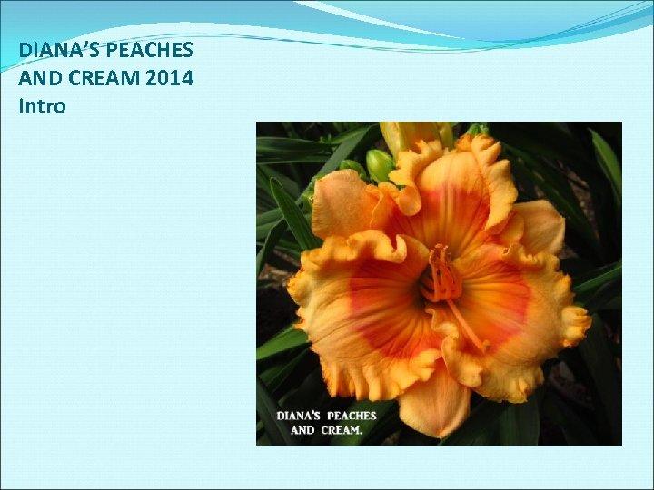 DIANA'S PEACHES AND CREAM 2014 Intro
