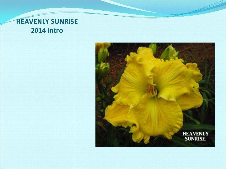 HEAVENLY SUNRISE 2014 Intro