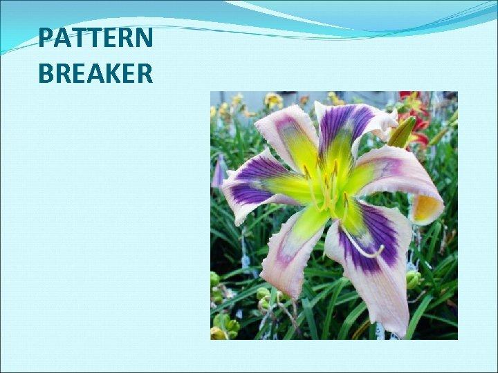 PATTERN BREAKER