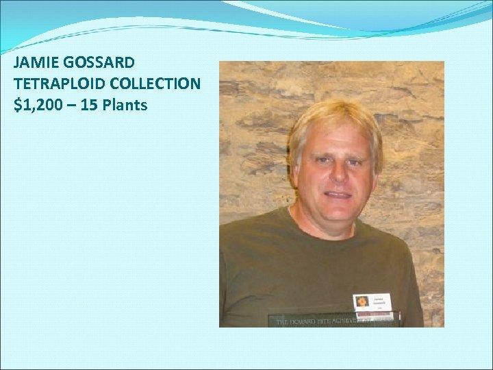 JAMIE GOSSARD TETRAPLOID COLLECTION $1, 200 – 15 Plants