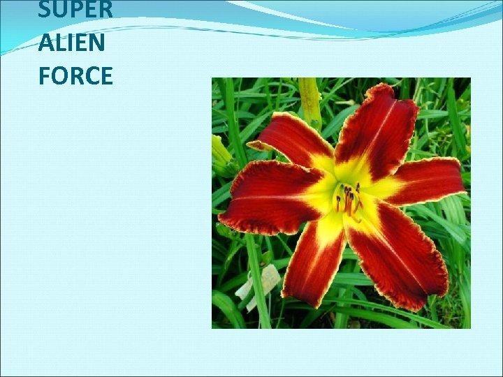 SUPER ALIEN FORCE
