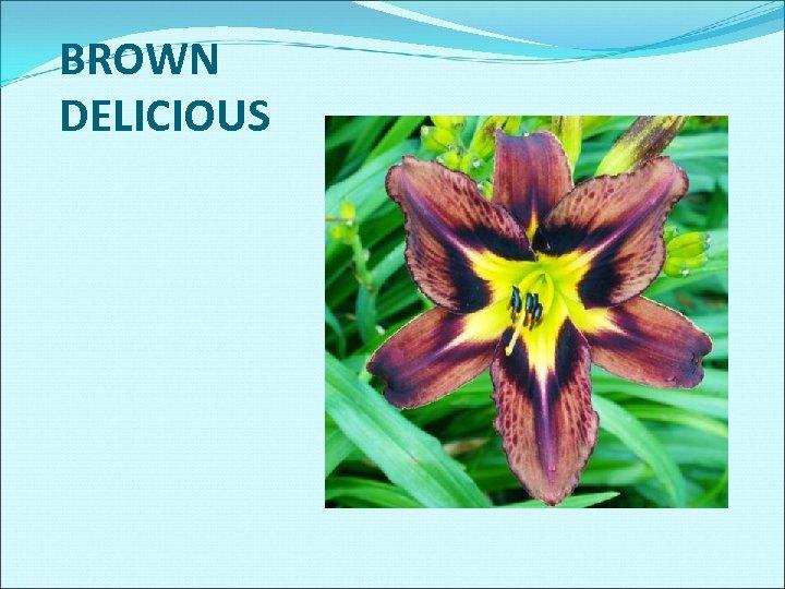BROWN DELICIOUS