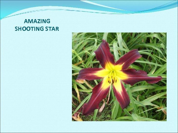 AMAZING SHOOTING STAR