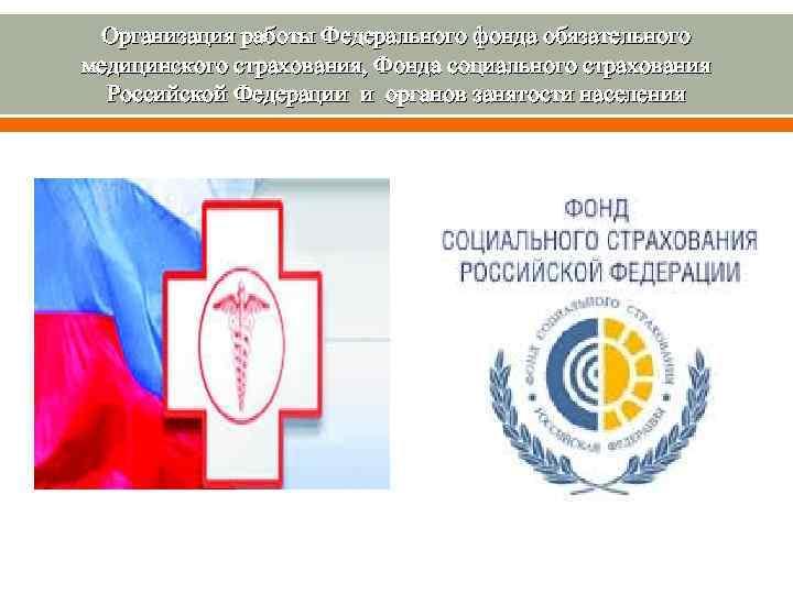 Организация работы Федерального фонда обязательного медицинского страхования, Фонда социального страхования Российской Федерации и органов