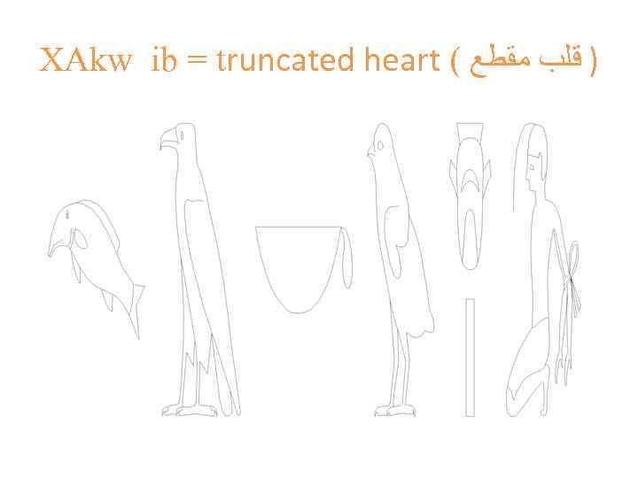 XAkw ib = truncated heart ( ) ﻗﻠﺐ ﻣﻘﻄﻊ