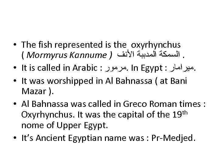 • The fish represented is the oxyrhynchus ( Mormyrus Kannume ) . ﺍﻟﺴﻤﻜﺔ