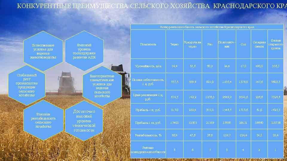 КОНКУРЕНТНЫЕ ПРЕИМУЩЕСТВА СЕЛЬСКОГО ХОЗЯЙСТВА КРАСНОДАРСКОГО КРА Конкурентоспособность сельского хозяйства Краснодарского края Овощи Сахарная открытого