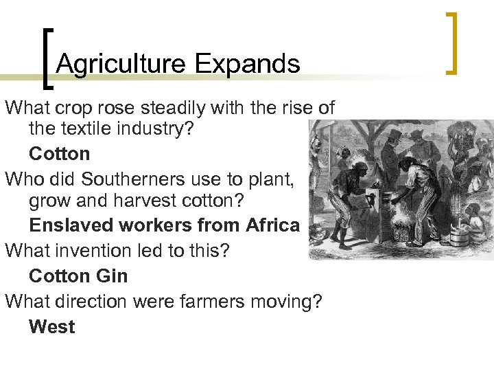 Agriculture Expands What crop rose steadily with the rise of the textile industry? Cotton