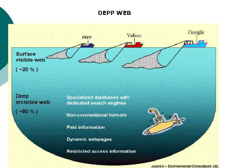 DEPP WEB