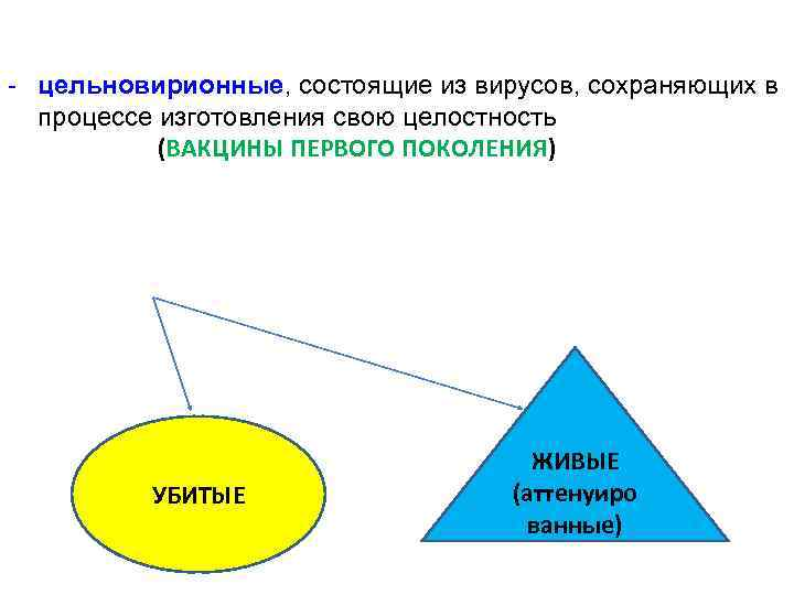 - цельновирионные, состоящие из вирусов, сохраняющих в процессе изготовления свою целостность (ВАКЦИНЫ ПЕРВОГО ПОКОЛЕНИЯ)