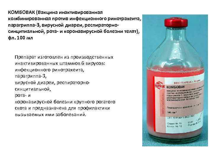 КОМБОВАК (Вакцина инактивированная комбинированная против инфекционного ринотрахеита, парагриппа-3, вирусной диареи, респираторносинцитиальной, рота- и коронавирусной