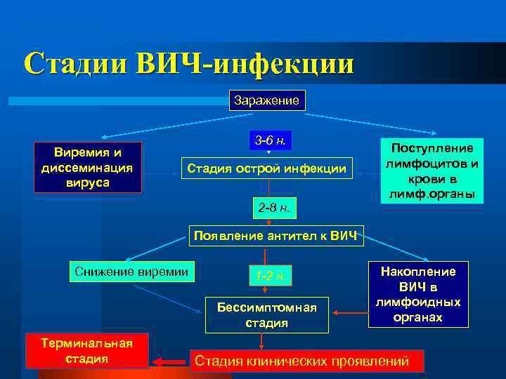 Стадии ВИЧ-инфекции Заражение Виремия и диссеминация вируса 3 -6 н. Стадия острой инфекции Поступление