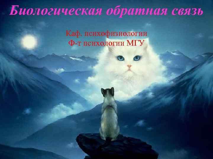 Биологическая обратная связь Каф. психофизиологии Ф т психологии МГУ