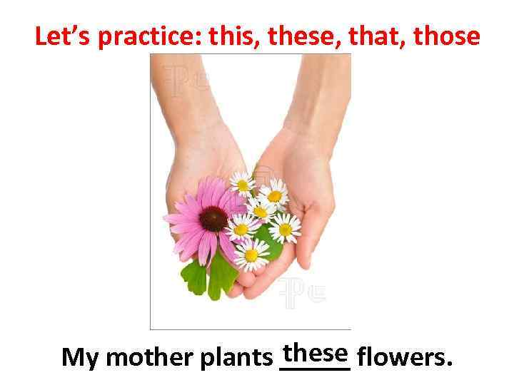 Let's practice: this, these, that, those these My mother plants _____ flowers.