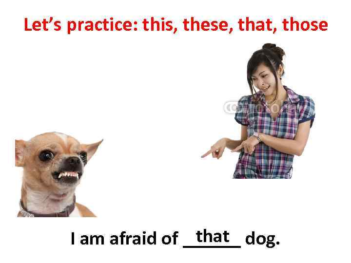 Let's practice: this, these, that, those that I am afraid of ______ dog.