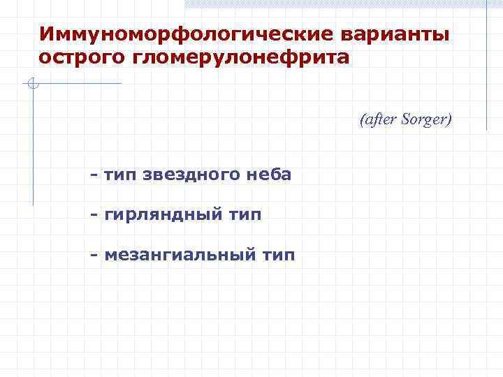 Иммуноморфологические варианты острого гломерулонефрита (after Sorger) - тип звездного неба - гирляндный тип -