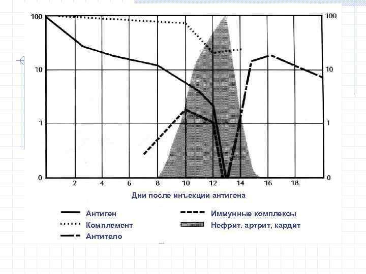 Дни после инъекции антигена Антиген Комплемент Антитело Иммунные комплексы Нефрит. артрит, кардит