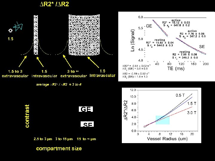 contrast GE SE 2. 5 to 3 µm 3 to 15 µm 15 to