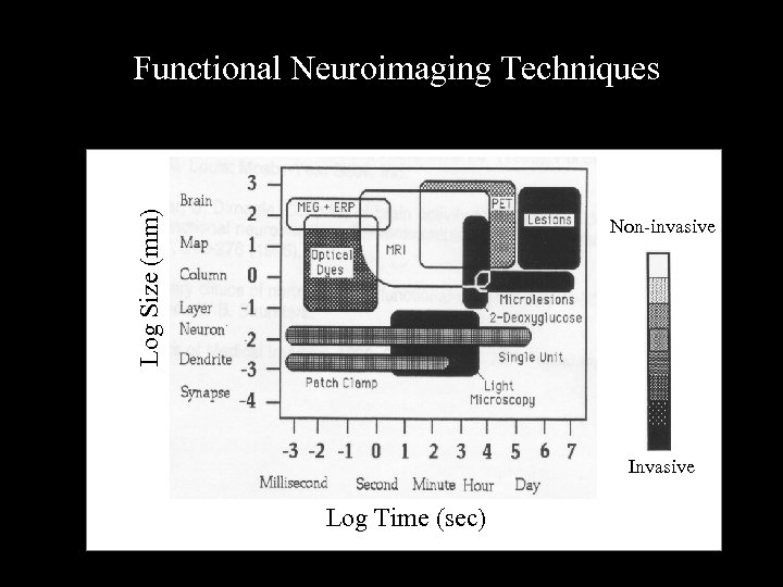 Log Size (mm) Functional Neuroimaging Techniques Non-invasive Invasive Log Time (sec)