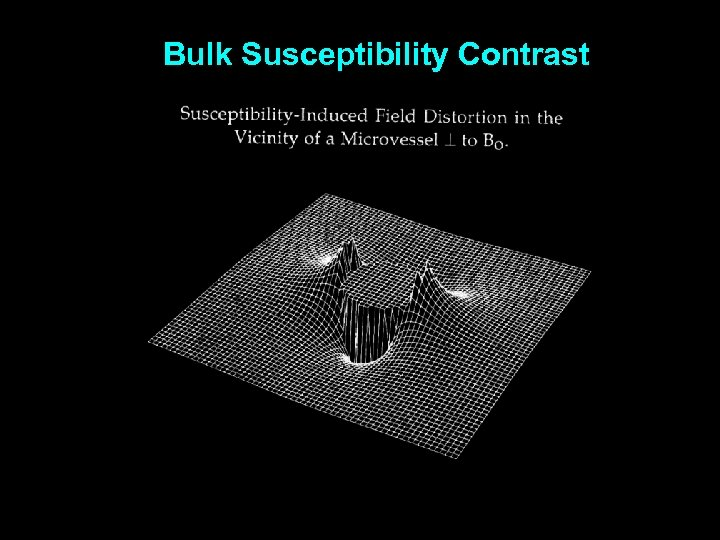 Bulk Susceptibility Contrast