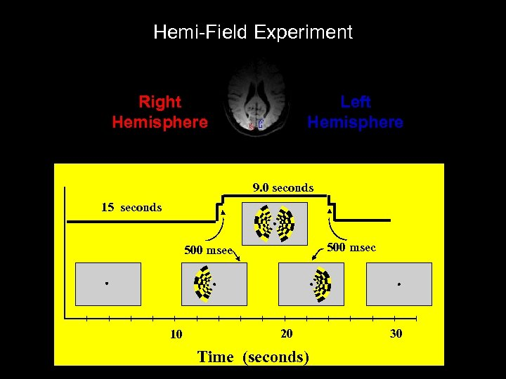 Hemi-Field Experiment Right Hemisphere Left Hemisphere 9. 0 seconds 15 seconds 500 msec 10