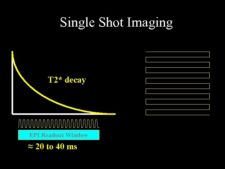 Single Shot Imaging T 2* decay EPI Readout Window ≈ 20 to 40 ms