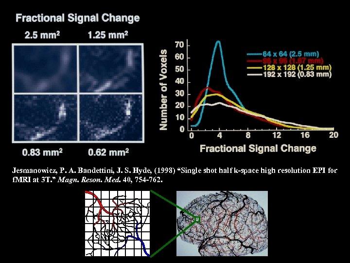 "Jesmanowicz, P. A. Bandettini, J. S. Hyde, (1998) ""Single shot half k-space high resolution"