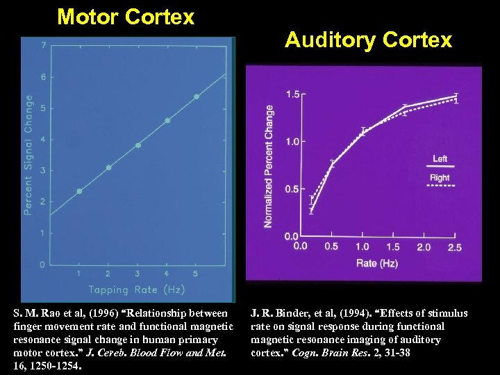 "Motor Cortex S. M. Rao et al, (1996) ""Relationship between finger movement rate and"