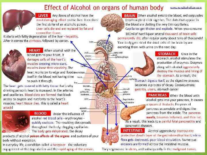 causes and effects of unhealthy blood in the human body Causes cholesterol is effects of extended-release niacin with laropiprant in high-risk patients us department of health and human services http://health.