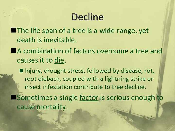 Decline n The life span of a tree is a wide-range, yet death is