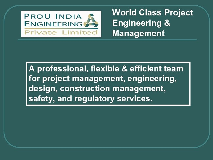 World Class Project Engineering & Management A professional, flexible & efficient team for project