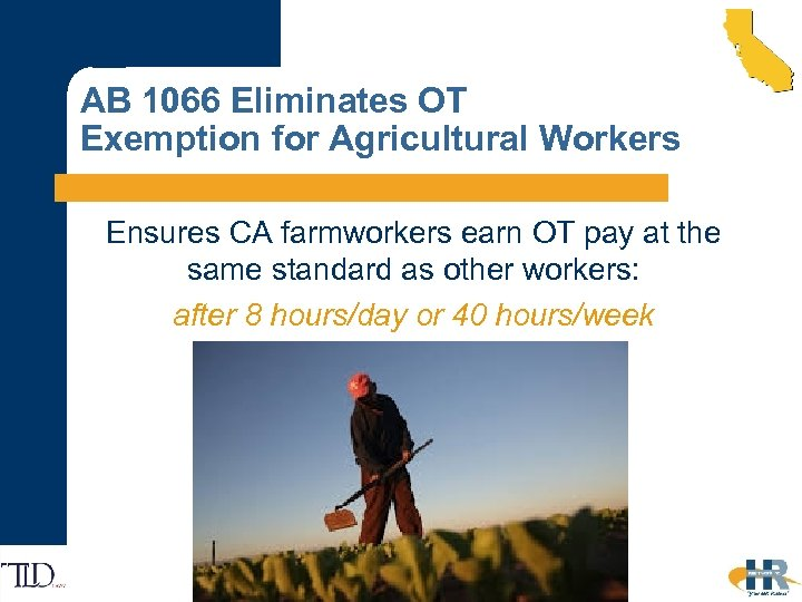 AB 1066 Eliminates OT Exemption for Agricultural Workers Ensures CA farmworkers earn OT pay