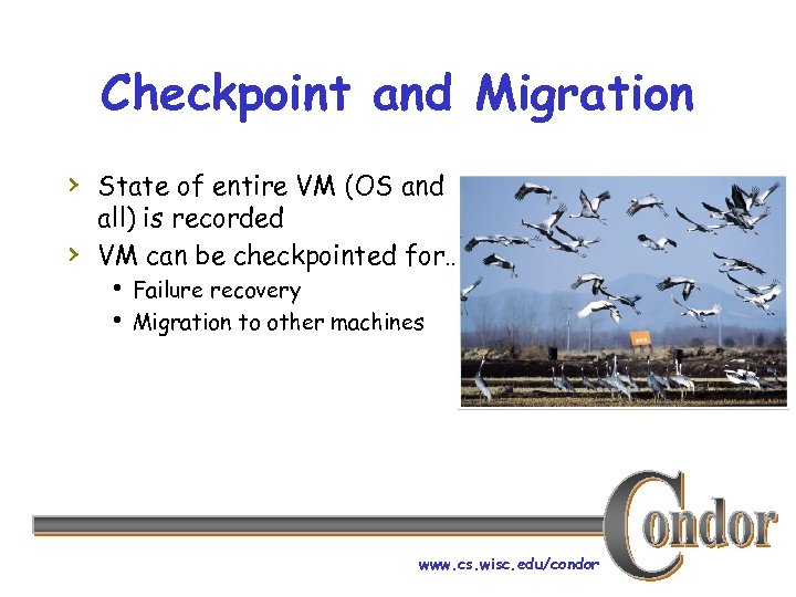 Checkpoint and Migration › State of entire VM (OS and › all) is recorded