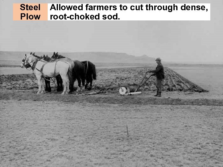 Steel Plow Allowed farmers to cut through dense, root-choked sod.