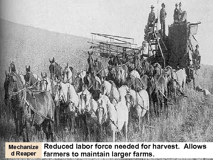 Mechanize d Reaper Reduced labor force needed for harvest. Allows farmers to maintain larger