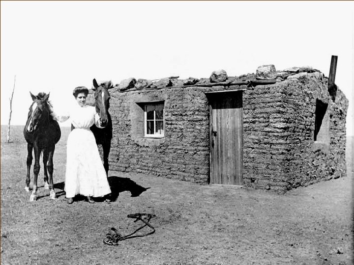 A Pioneer's Sod House, SD