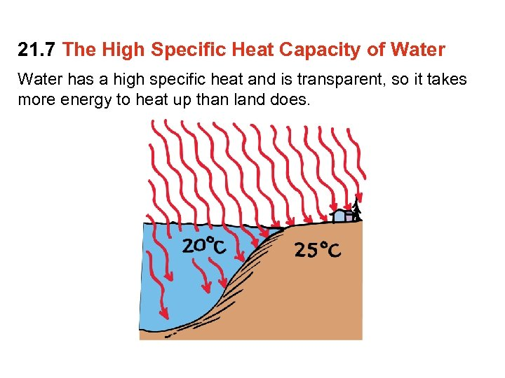 21. 7 The High Specific Heat Capacity of Water has a high specific heat