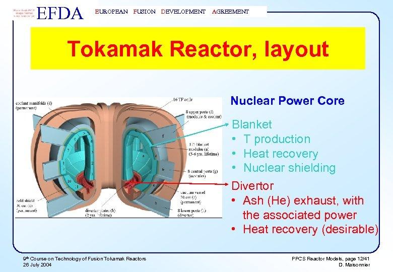 EFDA EUROPEAN FUSION DEVELOPMENT AGREEMENT Tokamak Reactor, layout Nuclear Power Core Blanket • T