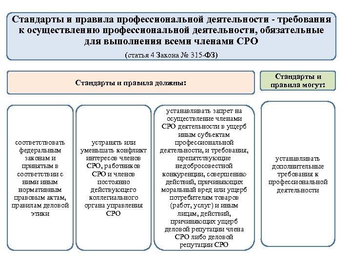 Стандарты и правила профессиональной деятельности - требования к осуществлению профессиональной деятельности, обязательные для выполнения
