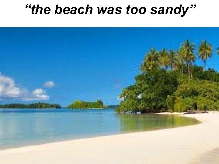 """the beach was too sandy"""