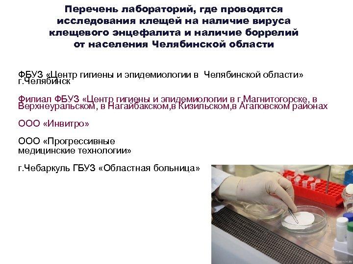 Перечень лабораторий, где проводятся исследования клещей на наличие вируса клещевого энцефалита и наличие боррелий