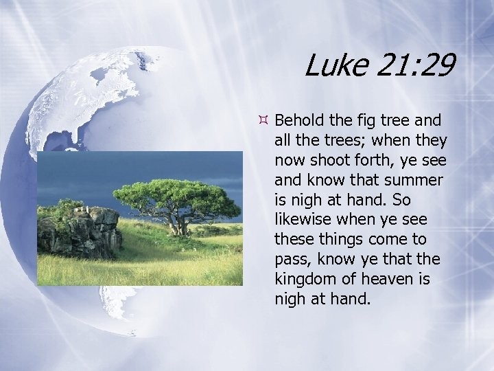 Luke 21: 29 Behold the fig tree and all the trees; when they now