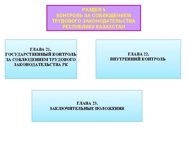 РАЗДЕЛ 5 КОНТРОЛЬ ЗА СОБЛЮДЕНИЕМ ТРУДОВОГО ЗАКОНОДАТЕЛЬСТВА РЕСПУБЛИКИ КАЗАХСТАН ГЛАВА 21. ГОСУДАРСТВЕННЫЙ КОНТРОЛЬ ЗА