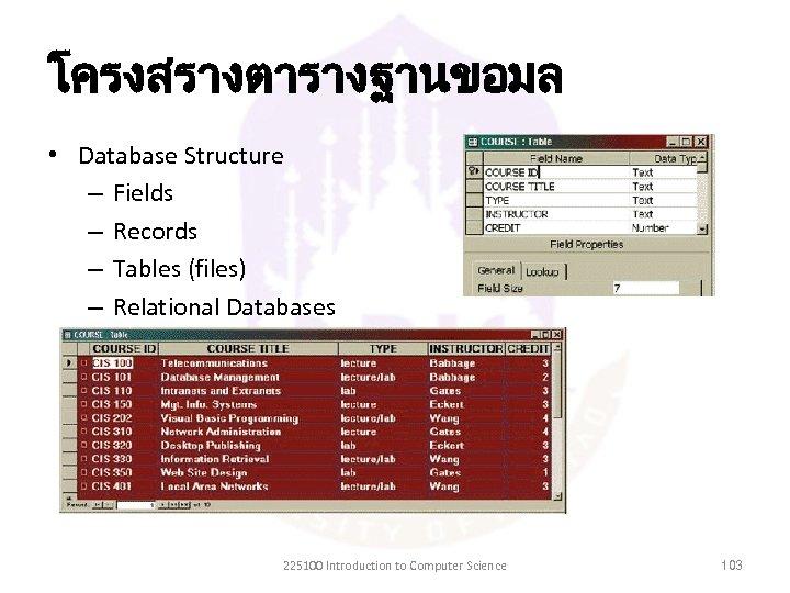 โครงสรางตารางฐานขอมล • Database Structure – Fields – Records – Tables (files) – Relational Databases