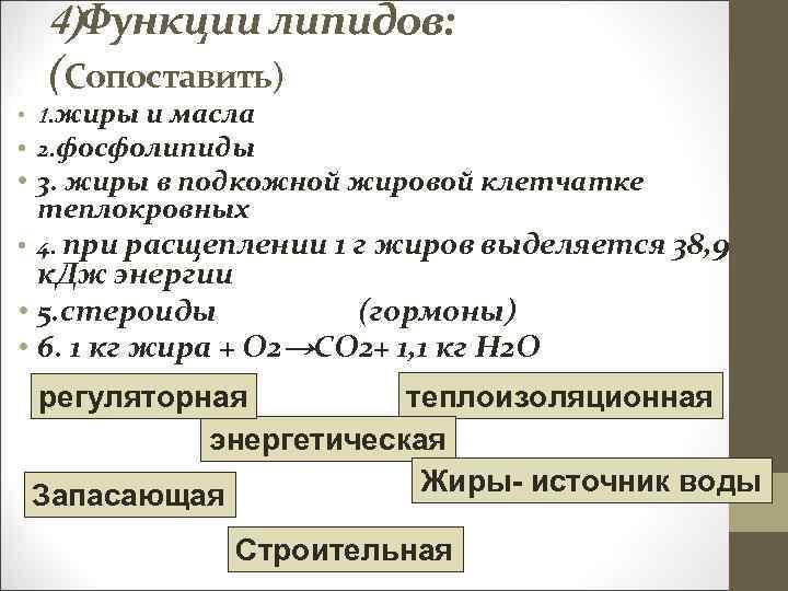 4)Функции липидов: (Сопоставить) • 1. жиры и масла • 2. фосфолипиды • 3. жиры