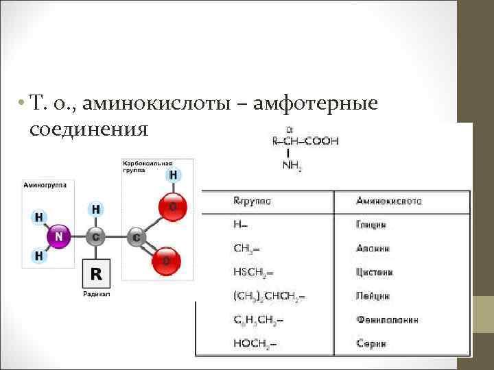 • Т. о. , аминокислоты – амфотерные соединения