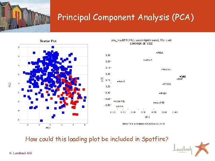 Principal Component Analysis (PCA) How could this loading plot be included in Spotfire? H.