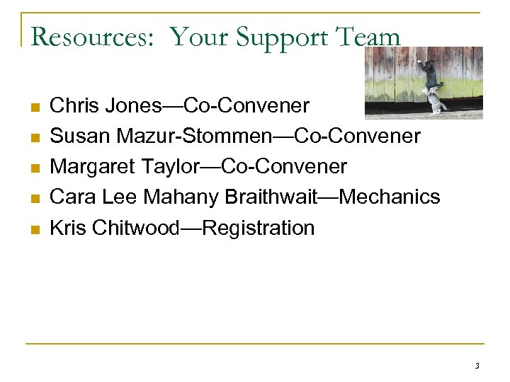 Resources: Your Support Team n n n Chris Jones—Co-Convener Susan Mazur-Stommen—Co-Convener Margaret Taylor—Co-Convener Cara